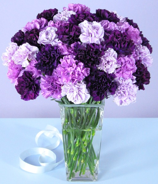 $19.99 Flowers & Gifts For All Occasions At ProFlowers