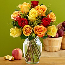 Save 50% on 12 Autumn Roses, only $19.99 at ProFlowers