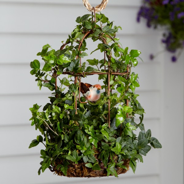 Hanging Flower Baskets Care : How to care for hanging flower baskets proflowers