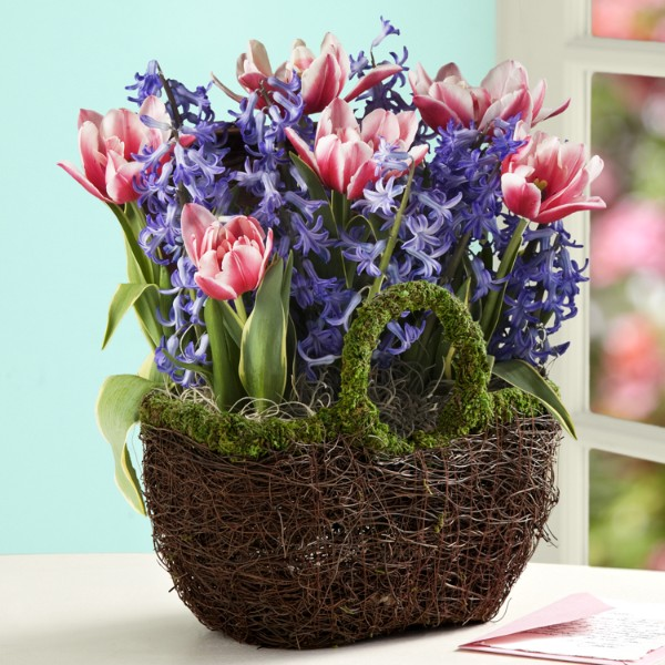 Flower Bulb Gift Baskets : Object moved