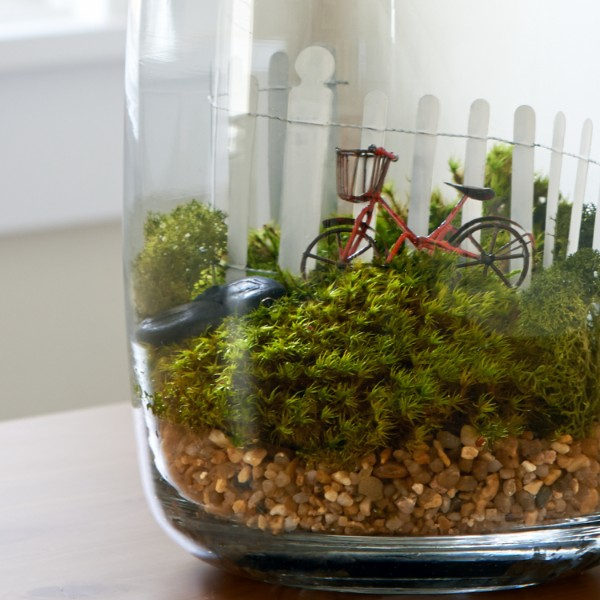 Going For A Ride Moss Terrarium