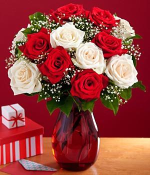 One Dozen Candy Cane Roses