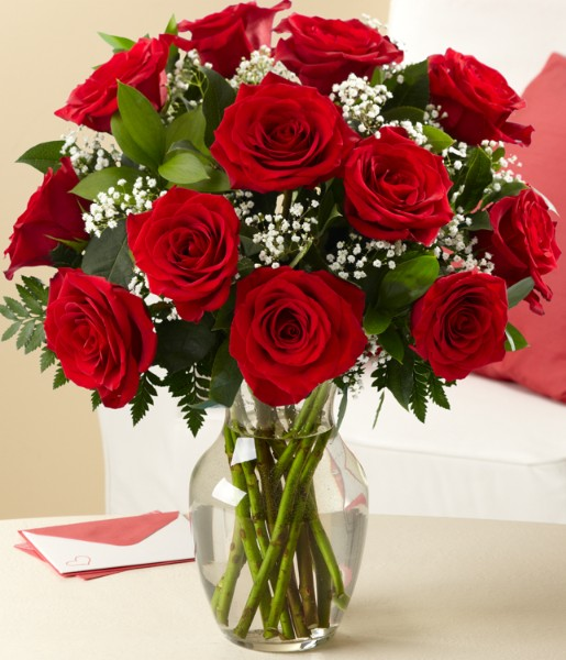 One Dozen Long-Stemmed Red Roses